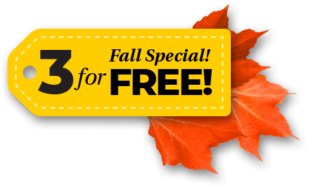 Fall Special! 3 for free!